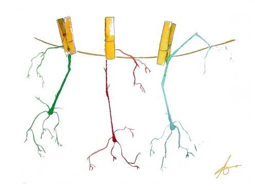 To Tend Neurons. Watercolours on paper.